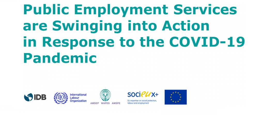 Joint Survey on Public Employment Services during COVID-19