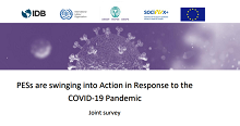 Summary report on the impact of COVID-19 on public employment services released